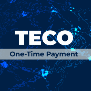 TECO OneTime Payment FeaturedImage